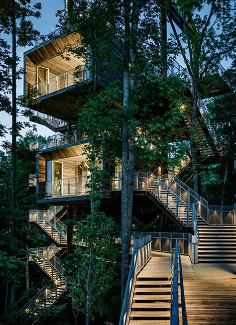 mithun erects the sustainability tree house in the dense