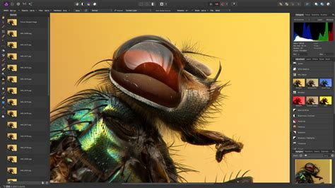 Affinity Photo goes on sale for Windows – and gets amazing